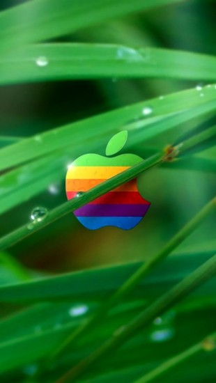Color Apple In Grass