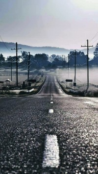 Road To Fog