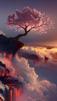 Cherry Trees On The Cliff