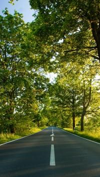 Road Summer