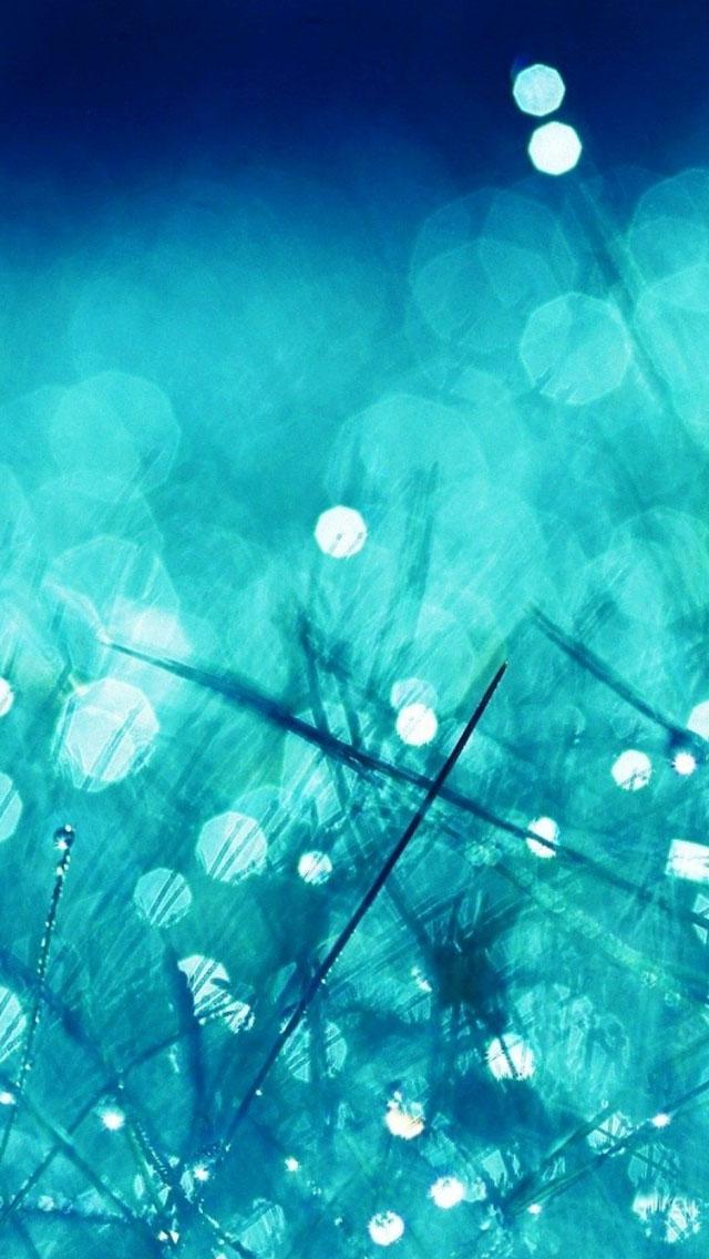 Rain Grass Bokeh Water - The iPhone Wallpapers