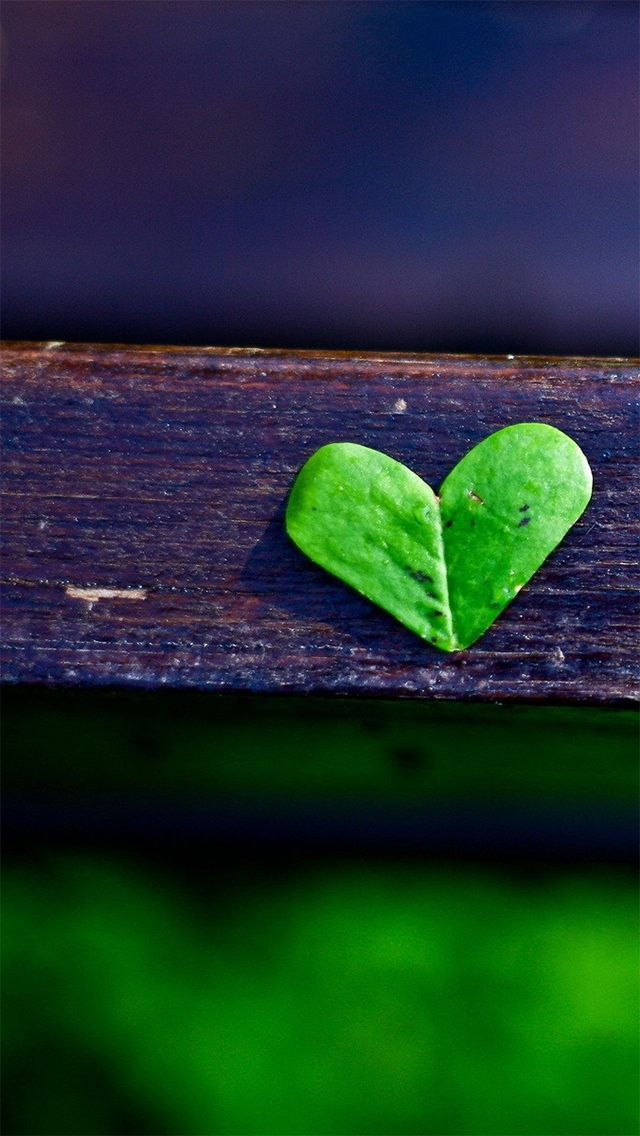 Little Heart Leaf - The iPhone Wallpapers