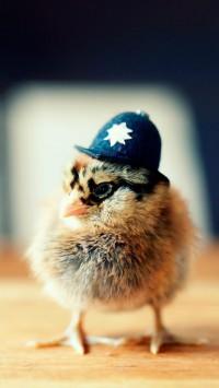 Police Chicken