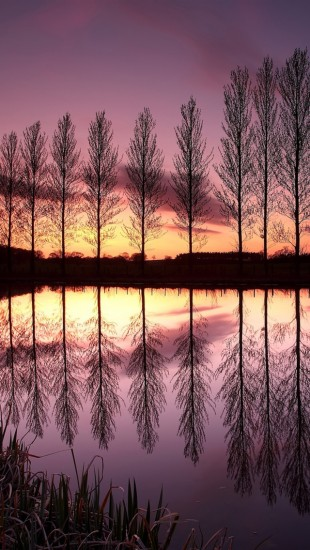 England Purple Sunset