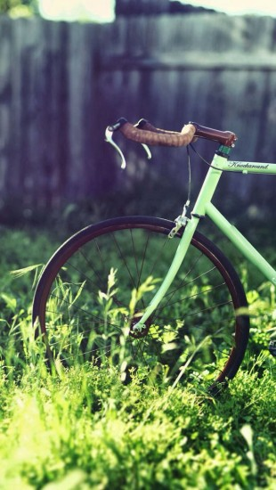 Bicycle On The Grass