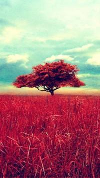 Red Tree Scene
