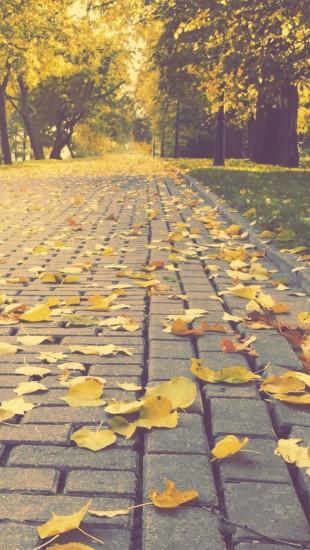 Autumn Park Alley