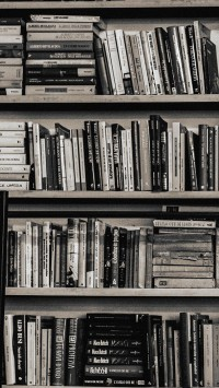 Library books shelf