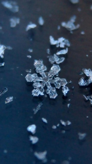 Unique and Beautiful Snowflakes