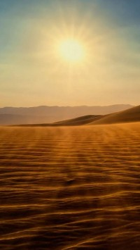 Gold desert into the sunset