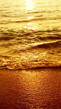 Sea Wave in Sunset