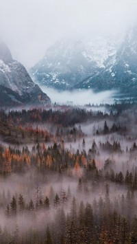 Yosemite-National-Park-200x355