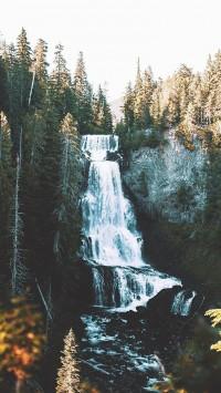 Alexander-falls-200x355