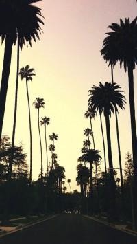 Beverly-Hills-200x355