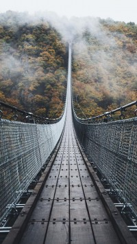 amazing-bridge