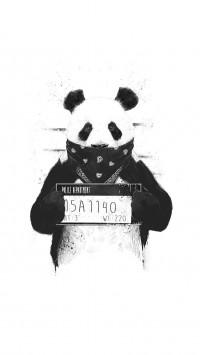 Bad-panda