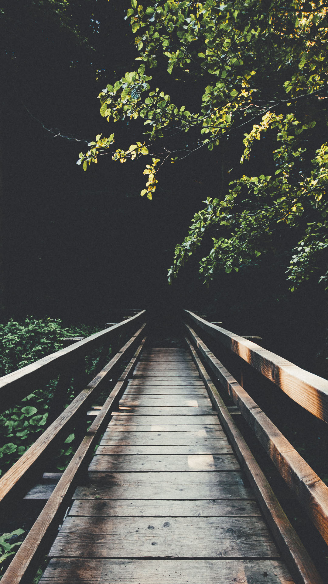 The Iphone Wallpapers Nature Lock Screen