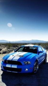 Blue Ford Shelby