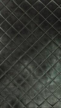 Rhombus Cortex