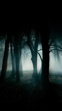 Best Dark Forest