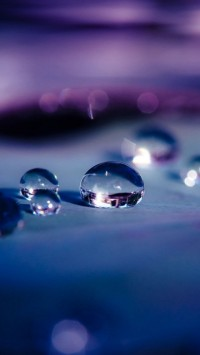 Water Drops Macro Depth Of Field