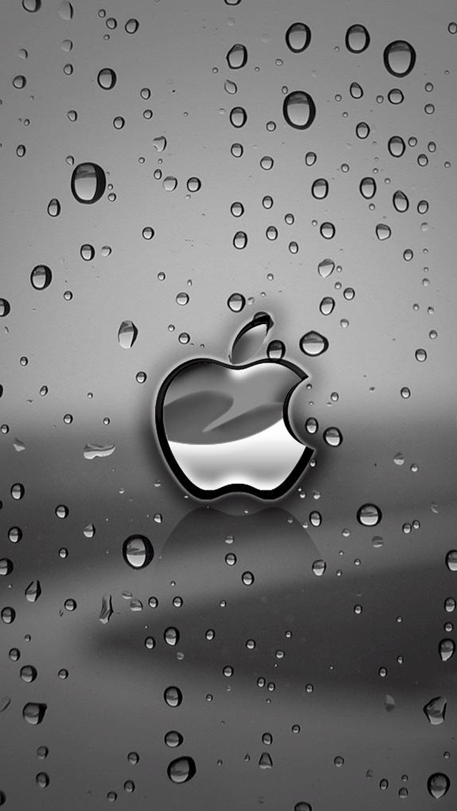 Apple Wet Screen