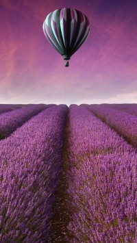 Air Balloon Above Lavender Field