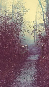 Autumn Mist Path