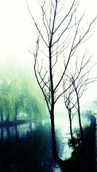 Lomo Graphy Misty Canal