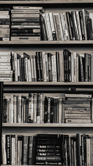 Library books shelf