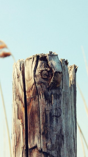 Old Wooden Post