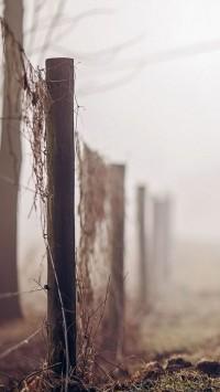 Fog road fence