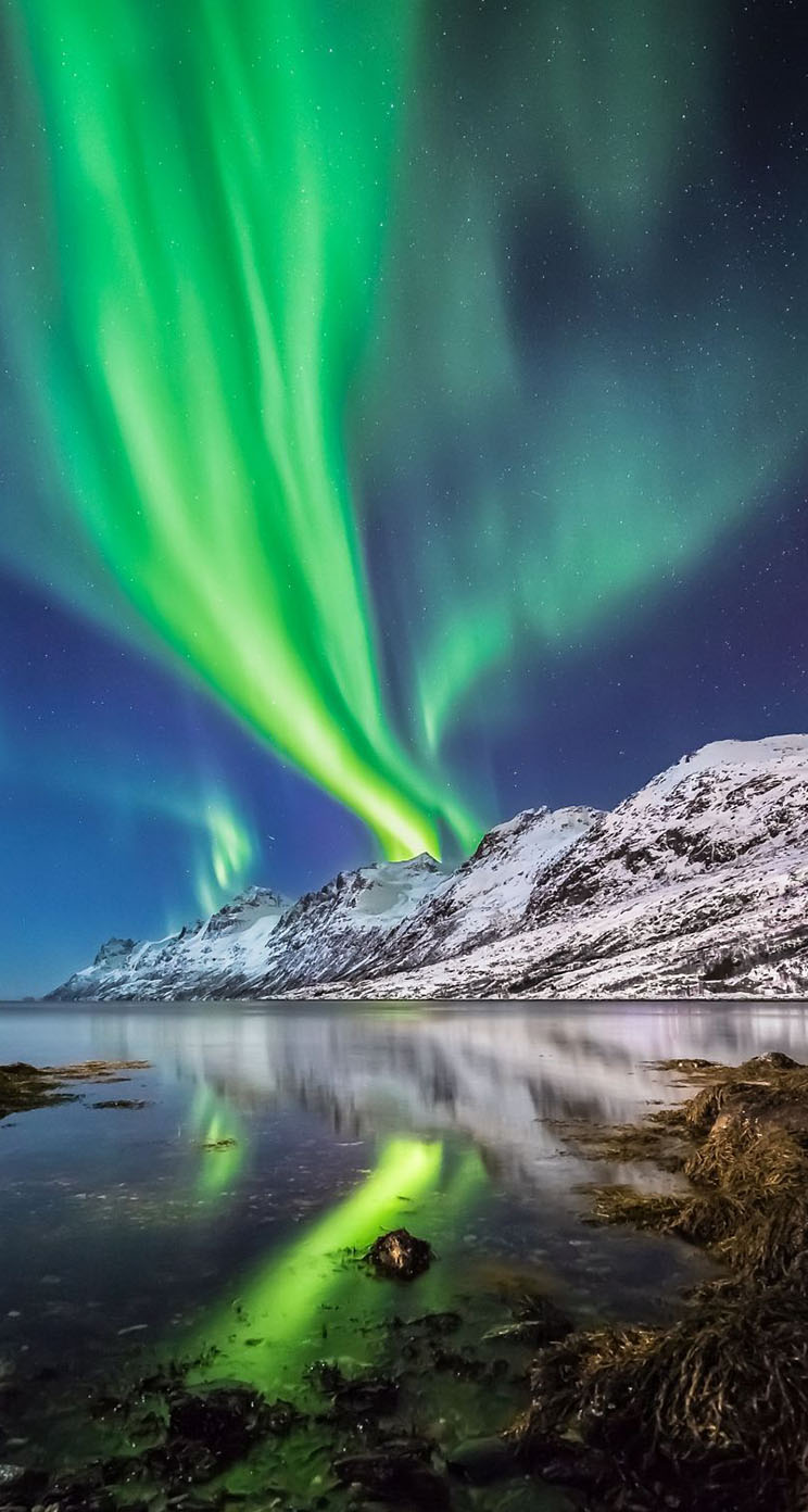 Aurora Borealis in Norway - The iPhone Wallpapers