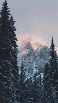 Winter-Decorating